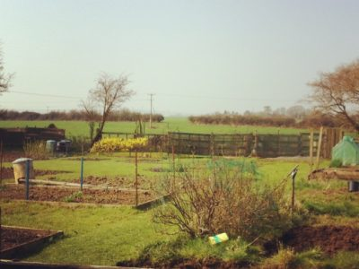 Allotments in Chiseldon Parish Council
