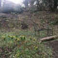 Iron bench Chiseldon