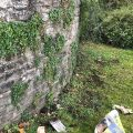 Planting by the wall, Chiseldon