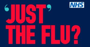 Just the flu? poster