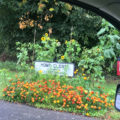 Home Close sign and flowers